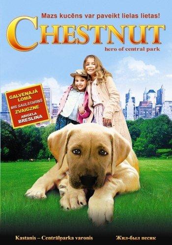 Kastanis - Centrālparka varonis / Chestnut: Hero of Central Park